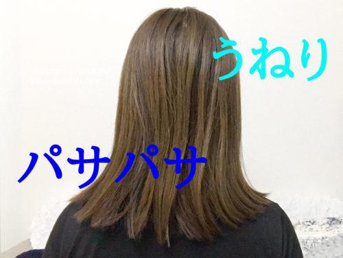 うねりとパサパサがひどくて、ただのボサボサ髪に見えてしまう私の髪。